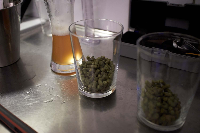 151220_lindh_craft_beer_citrasimcoe_0029